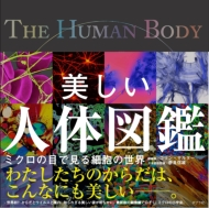 美しい人体図鑑 ミクロの目で見る細胞の世界