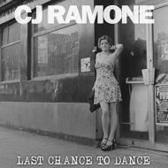 Last Chance To Dance (アナログレコード)