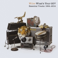 What's Your 20: Essential Tracks 1994-2014(2CD)
