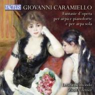 ハープとピアノ、ハープ・ソロのためのオペラティック・ファンタジー集 レティツィア・ベルモンド(ハープ)、ツォルト・チェトネル(ピアノ)