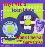 Forgotten Teen Idols