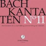 バッハ(1685-1750)/Cantatas Vol.11: R.lutz / J S Bach Stiftung O & Cho