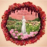 Secret Garden (+DVD)