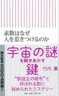 素数はなぜ人を惹きつけるのか 朝日新書