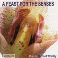 A Feast For The Senses: Rundell / Vagenza Soloists Etc