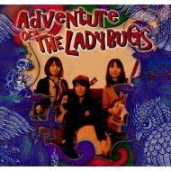 Adventure OF THE LADYBUGS
