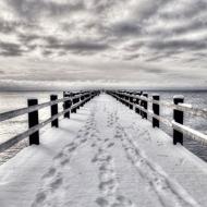 Ben Watt / Robert Wyatt/Summer Into Winter / North Marine Drive