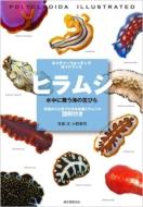 ヒラムシ 水中に舞う海の花びら 特徴がひと目でわかる各種ヒラムシの図解付き ネイチャーウォッチングガイドブック