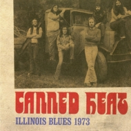 Illinois Blues 1973