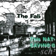 This Nation's Saving Grace (Expanded Edition)