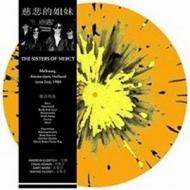 Melkweg, Amsterdam June 2nd, 1984 (Orange Vinyl)