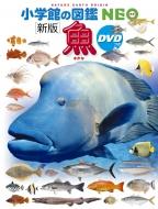 新版 魚 DVDつき 小学館の図鑑NEO