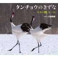 タンチョウのきずな 「日本の鶴」の一年 小学館の図鑑NEOの科学絵本