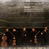 弦楽四重奏曲第19番 『不協和音』、クラリネット五重奏曲 金子平、ウェールズ弦楽四重奏団