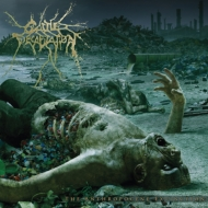 Anthropocene Extinction
