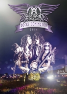 Aerosmith Rocks Donington 2014 (+CD)(限定盤)