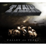 Valley Of Tears (アナログレコード)