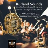 ヴァスクス:交響曲第2番、エッシェンヴァルドス:『北極の光景:夜』、他 ラクスティガラ&リエパーヤ響