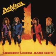Under Lock & Key (180グラム重量盤)