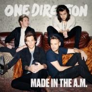 Made In The A.M.�X�^���_�[�h�E�G�f�B�V��������d�l