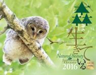森は生きているカレンダー 壁掛タイプ 2016年