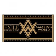 �r�[�`�^�I��/ EXILE LIVE TOUR 2015 �gAMAZING WORLD�h