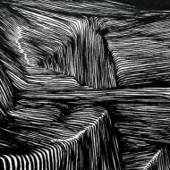 Magnetic Bodies / Maps Of Bones