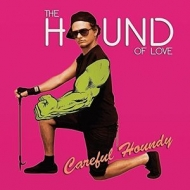 Careful Houndy