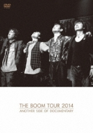 THE BOOM TOUR 2014 ANOTHER SIDE OF DOCUMENTARY (DVD)