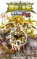 聖闘士星矢 THE LOST CANVAS 冥王神話外伝14 少年チャンピオン・コミックス