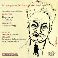 ピアノ作品集/Masterpieces For Piano Left Hand Vol.2: S.rapp Klansky Nikolayeva Klien(P)