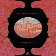 Strewberry Light