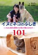 イヌとネコのふしぎ101 いちばん身近な動物たちの体と行動と心のなぜ