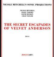 Secret Escapades Of Velvet Anderson
