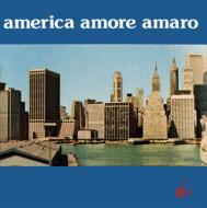 Remigio Ducros / Luciano Simoncini/America Amore Amaro (180g)