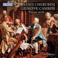 カンビーニ:弦楽三重奏曲集、ケルビーニ:弦楽三重奏曲第1番、第2番 トリオ・ヘーゲル