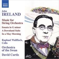 チェロと弦楽オーケストラのための作品集 R.ウォルフィッシュ、D.カーティス&オーケストラ・オブ・ザ・スワン