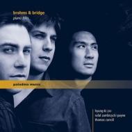 ブラームス:ピアノ三重奏曲第1番、ブリッジ:幻想曲 ヨー・ヒュンキ、ラファル・ザンブリツキ=ペイン、トーマス・キャロル