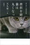 挫折を経て、猫は丸くなった。 書き出し小説名作集