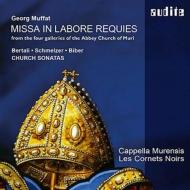 Misse In Labore Regules: Strobl / Cappella Murensis Les Cornets Noirs +bertali, Schmelzer, Biber