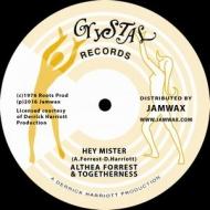 Hey Mister (12インチシングルレコード)