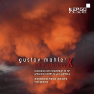 交響曲第10番(ガムゾウ版) ヨエル・ガムゾウ&国際マーラー管弦楽団