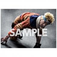 ブロマイド2枚セット(うずまきナルト) / ライブ・スペクタクル「NARUTO-ナルト-」