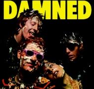 Damned Damned Damned (200g)