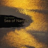 名前の海〜フルートとピアノのための作品集 マイケン・マティセン・スカウ、トロン・スカウ