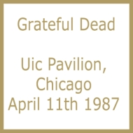 Uic Pavilion, Chicago April 11th 1987