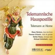 テレマン(1681-1767)/Telemann At Home: Mertens(B-br) Fritzsch(Gamb) Maass(Lute) Schonheit(Organ)