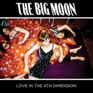 Love In The 4th Dimension (アナログレコード)
