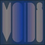 Voids (180グラム重量盤)