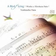 鳥が飛ぶ-guitar Works: 原善伸 鈴木大介 大萩康司
